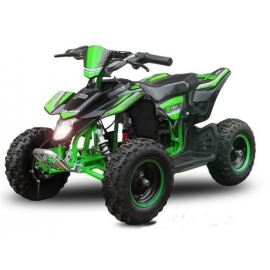 "Mini Quad Madox 6"" Premium electric Quad 1000W"