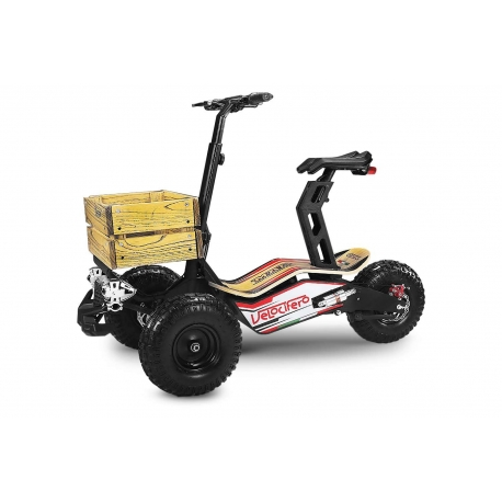 Mad Truck Electrique 2000W 60V Lithium