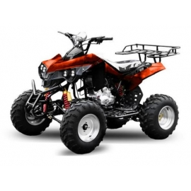 Quad Warrior 250cc