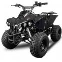 Warrior XXL 125cc