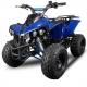 Quad Warriror XXL 125cc